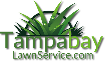 Tampabay Lawn Service